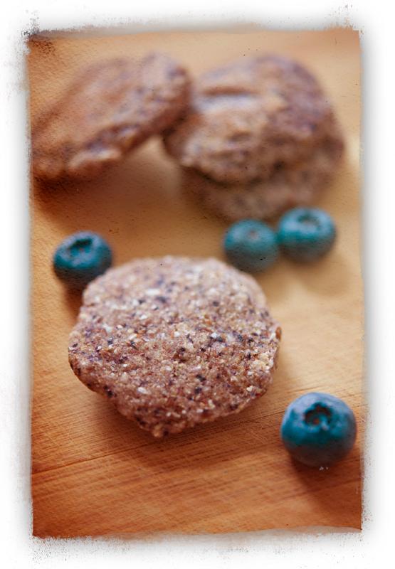 Blueberry1_lr