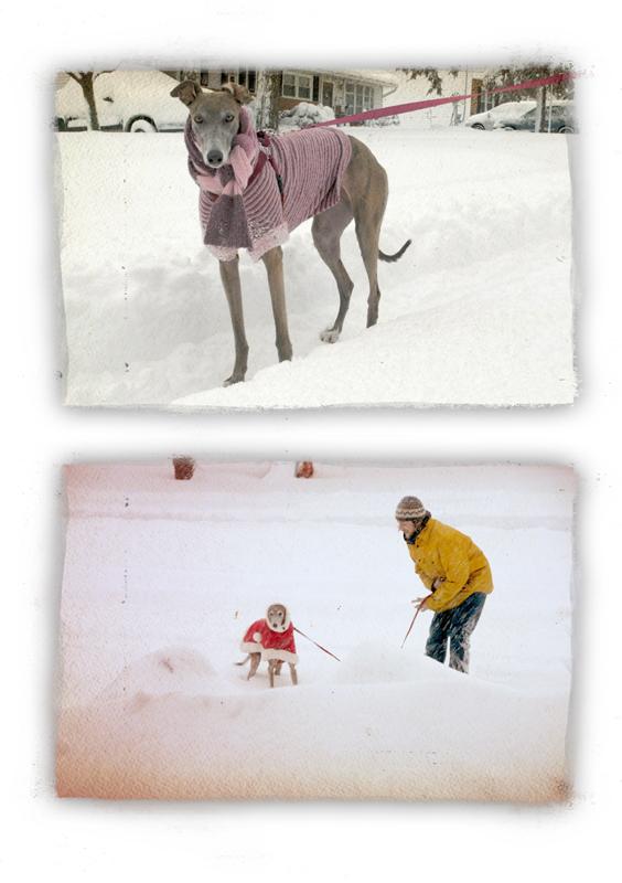 snowbeastdoubleLR